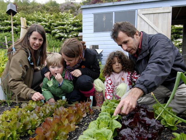 Families looking at a vegetable patch