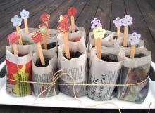Homemade newspaper plant pots